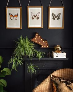 Plants, Nature Prints on Black Walls Diy Wall Decor, Boho Decor, Interior Plants, Interior Design, Gravity Home, Dark Walls, Dark Interiors, Do It Yourself Home, Interior Inspiration