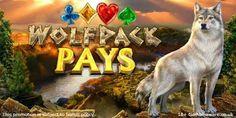 Gold coast casino slot tournaments
