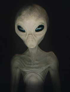 Research Paper Topics About Aliens Wiki - image 6