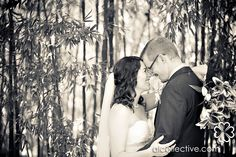 Love the bamboo #wedding