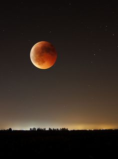Blood Moon (total eclipse April By Moon Dance, Shoot The Moon, Moon Shadow, Sun Moon Stars, Moon Pictures, Moon Photos, Moon Rise, Beautiful Moon, Simply Beautiful