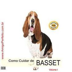 Familia Basset Hound: Veterinária orienta sobre os riscos e dá dicas de ...