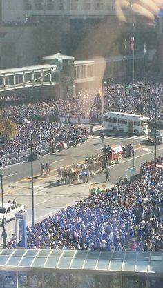 Horses, KC Royals 2015 World Series Victory Parade