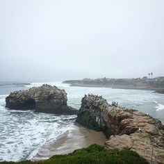 Santa Cruz CA:  by bodhisamanta