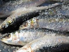Algarve Cuisine includes these slippery little sardines!