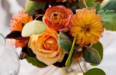 blumen balkon blumen im herbst orange arten