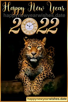 Here we have the best gifs of New Year 2022 you can download and share with your friends.If you are looking for animated gif images of NEW year 2022 download here IT'S FREE. Happy New Year, Gifs, New Year Images, Animated Gif, Animation, Friends, Fun, Amigos, Animation Movies