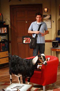Josh Radnor in How I Met Your Mother (2005)