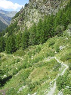 Un itinerario poco impegnativo partendo da Lillaz -  Cogne è Goilles-Desot a 1834 metri proseguendo poi fino in fondo agli alpeggi e scendendo verso le cascate di Lillaz.  Se si ha tempo e resistenza si può proseguire sulla stessa via fino al rifugio Sogno di Berdzé, ma in questo caso il cammino dura ca. 3 ore e mezza.