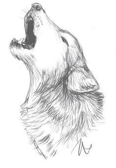 Lobo Wolf Dibujo Arte Dibujo a mano
