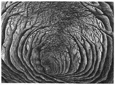 Click to enlarge image stanley-donwood-far-away-is-close-at-hand-577.jpg