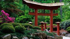 16 étapes de créer un jardin japonais tori porte japonaise