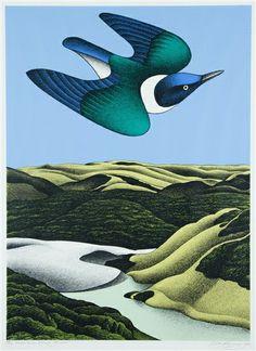 View Swoop of the Kotare, Wainamu by Don Binney on artnet. Browse upcoming and past auction lots by Don Binney. Art Maori, New Zealand Art, Nz Art, Landscape Artwork, Contemporary Artwork, Contemporary Artists, Modern Art, Bird Illustration, Illustrations