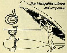 Paddle setups for portaging canoes