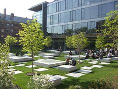 NORTHWEST LABORATORIES Harvard University, Cambridge, MA / Michael Van Valkenburgh Associates, Inc.