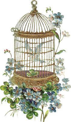 Beautiful vintage birdcage with flowers Decoupage Vintage, Decoupage Paper, Victorian Flowers, Vintage Flowers, Vintage Birdcage, Vintage Pictures, Vintage Images, Etiquette Vintage, Hand Flowers