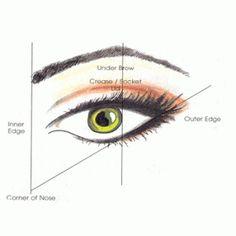 applying eye shadow
