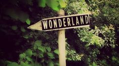 Wonderland ? It's really my favourite place in the world ! ♥ Brain Off . Dream On ! ♥