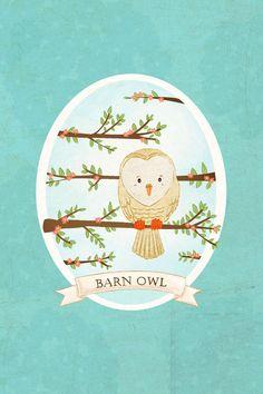 owl art print- Barn Owl Print - Nursery art prints, baby nursery, nursery decor, nursery wall art, kids art, bird art. $8.00, via Etsy.