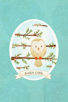 owl art print- Barn Owl Print - Nursery art prints, baby nursery, nursery decor, nursery wall art, kids art, bird art. $8.00, via Etsy.
