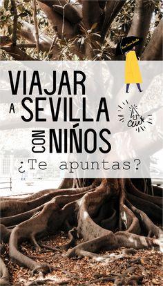 VIAJAR CON NIÑOS Y PASARLO BIEN Descubrir Sevilla y que tus peques sientan de cerca una nueva cultura, experimenten nuevos paisajes, lugares llamativos. Comprueben como un grupo de personas están atentas a historias que te cuentan, que conozcan grandes personajes, y sientan emociones de hechos que vivieron otros en Sevilla. No sólo los mayores sentimos una ciudad, los más pequeños también, y te sorprenderás cuando quizás veas que lo pasan en grande. Grande, Food, Facts, Group, City, Culture, People, Scenery, Meal