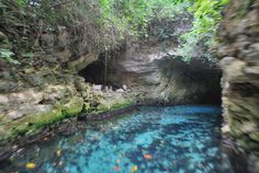 Xcaret's underground rivers are part of a large cave system that forms deep under the surface of the Yucatan peninsula. Snorkel in caves and swim along unique rock formations and marine fossils at Xcaret Park Mexico.