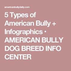 2 best healthy raw dog food recipes for american bullies american 5 types of american bully infographics american bully dog breed info center forumfinder Image collections