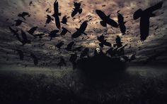 Dead Can Dance ~ The Wind That Shakes the Barley. A beautiful old (and sad) irish song. Dead Can Dance, Dark Art, Fiction, Scene, Fantasy, Canning, Abstract, Darkness, Sad Heart