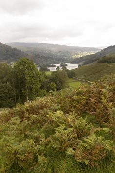 Looking eastwards from Loughrigg Terrace with Rydal Water in the distance. A very pleasant walk from here back to Ambleside. Photo by Dave John