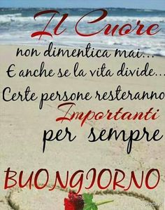 Bacheca - Chatta Good Morning Greetings, Good Morning Good Night, Good Morning Quotes, Italian Memes, Italian Quotes, Italian Greetings, Italian Life, Hello Beautiful, Encouragement