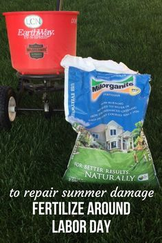 For a thick, healthy, green lawn Fertilize around Labor Day.