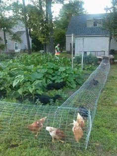 Bahçelievler