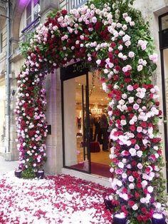audreylovesparis:  entrance to Repetto shop, Paris  Grand entrance