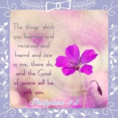 Pin by debbie chappell on good morning quotes pinterest morning philippians 49 m4hsunfo