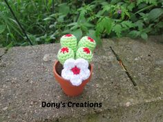 FREE PATTERNS ~ Dony's Creations: Succulents in crochet