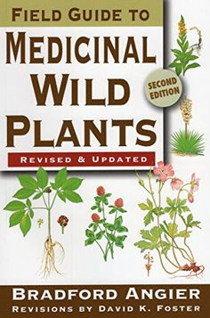 """Read """"Field Guide to Medicinal Wild Plants"""" by Bradford Angier available from Rakuten Kobo. First-ever revision of a classic guidebook. Information on each plant's characteristics, distribution, and medicinal qua. Healing Herbs, Medicinal Plants, Natural Healing, Au Natural, Natural Herbs, Natural Medicine, Herbal Medicine, Edible Wild Plants, Wild Edibles"""