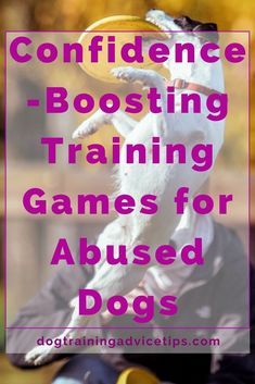 New Dog Training Ideas - CLICK THE PIC for Many Dog Care and Training Ideas. #dogtraining #puppytraining