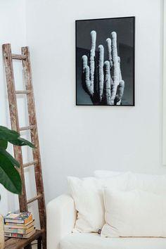Pampa Cactus print