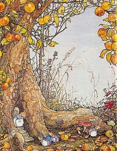 I love Brambly Hedge! By Jill Barklem.