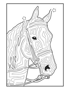 horse mazes - Google Search