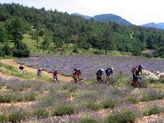 Mountain biking in Buech-Sisteronais, France