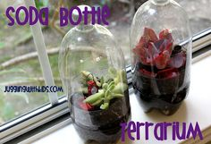 Make your own terrarium out of a 2-liter soda bottle.  Very simple and easy to do. =) #jugglingwithkids.com #terrarium #sodabottle #garden