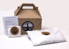 Natural Earth Paint - Eco Gesso Kit