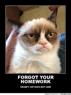 FORGOT YOUR HOMEWORK... - grumpy cat Meme Generator Posterizer