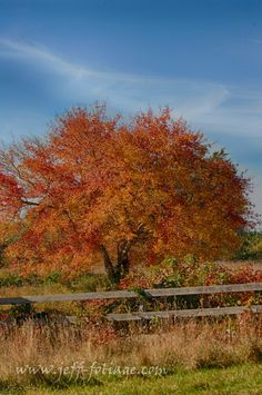 Is your foliage itinerary wearing you out? - New England fall foliage