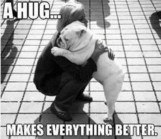 bulldog-hug
