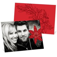 Photo Christmas Cards  -- Fresh Poinsettia Horizontal Photo