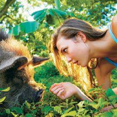 #hogs #women #friends #animals