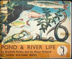 front cover of Pond & River Life by Brynhild Parker, text by Alwyn Richards, 1941, a Puffin Picture Book