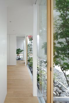 The Green Edge House by mA - style Architects
